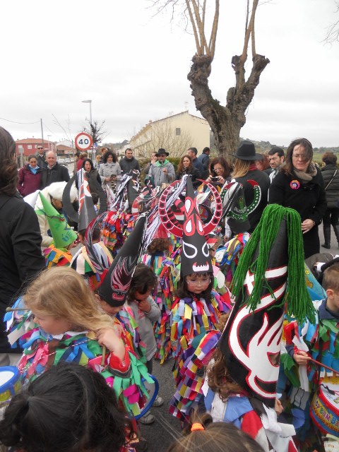 carnaval 2014 015 (640x480)